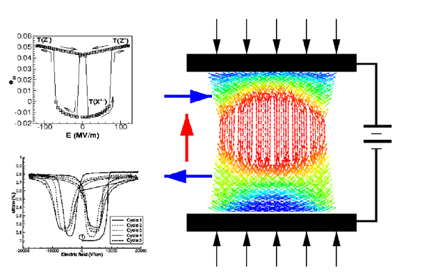 Ab-initio Multiscale Simulation of Piezoelectric Response