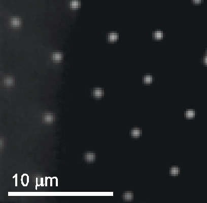 Attractive Interactions Between Like-Charged Colloidal Particle on Surfaces
