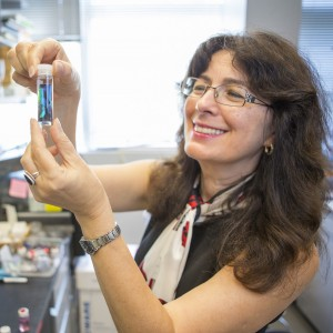 Congratulations to Joanna Aizenberg for being elected to the National Academy of Sciences